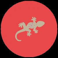 Valcoco